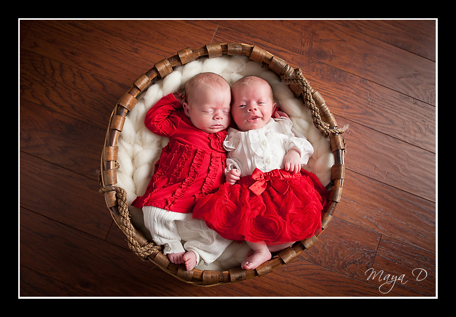 twin newborn in basket