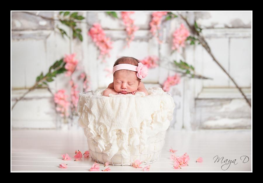 beautiful newborn portrait with flower