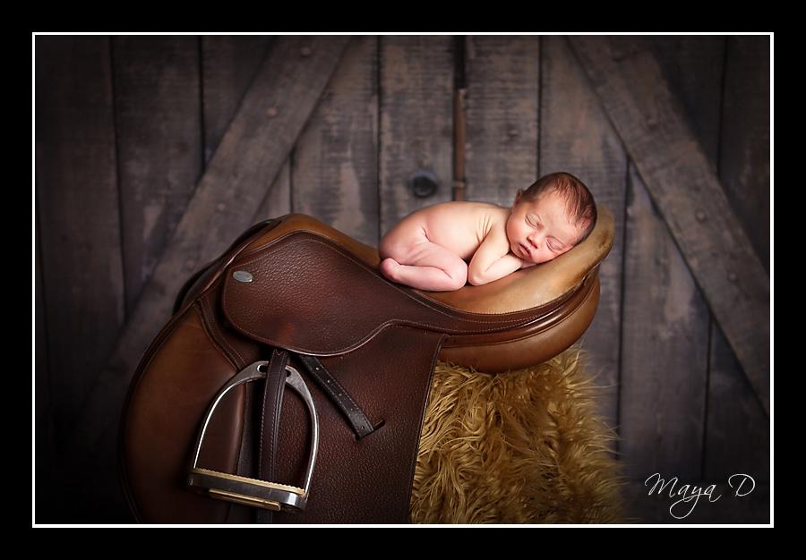Newborn in a horse saddle