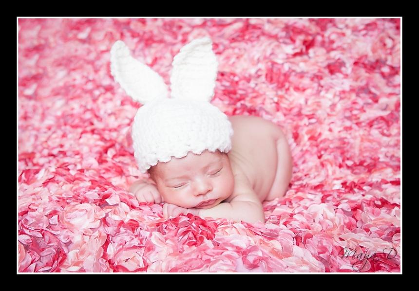 Newborn Photography Columbus, OH